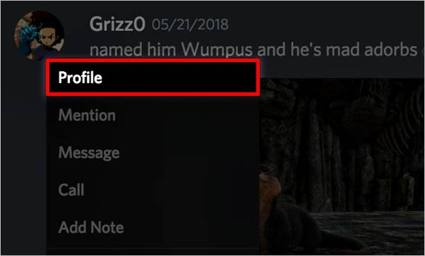 perfil-amigo-discord